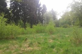 Działka na sprzedaż o pow. 4000 m2 - Dobroszów Mały - 50 000,00 1